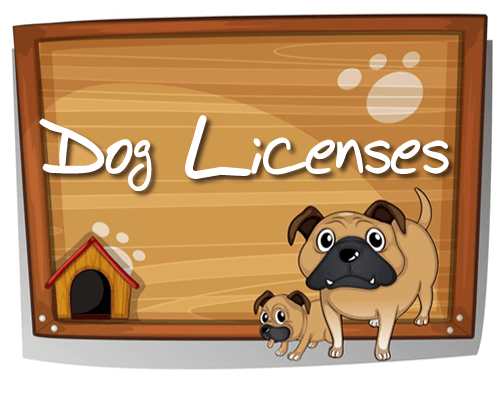 Dog_Licenses